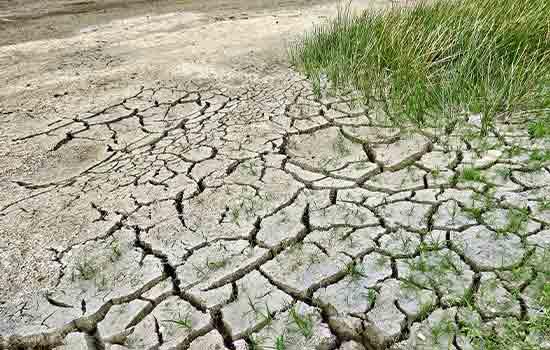 Klima 1000 godine