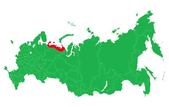 Ruski referendum