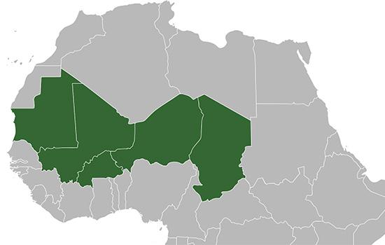 G5 Sahel i EU