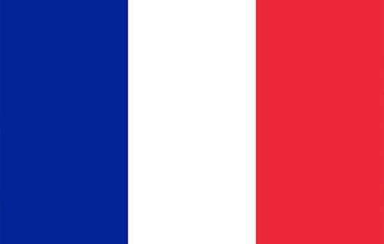 Francuski generali
